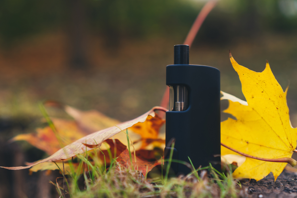 Rising Vapors The Vape Pen's Incredible Journey from Garden Shed to Fashion Runway