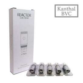 Reactor BVC Coil Pack (5)